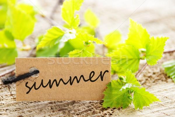 Stockfoto: Label · zomer · natuurlijke · naar · geschreven · groene · bladeren