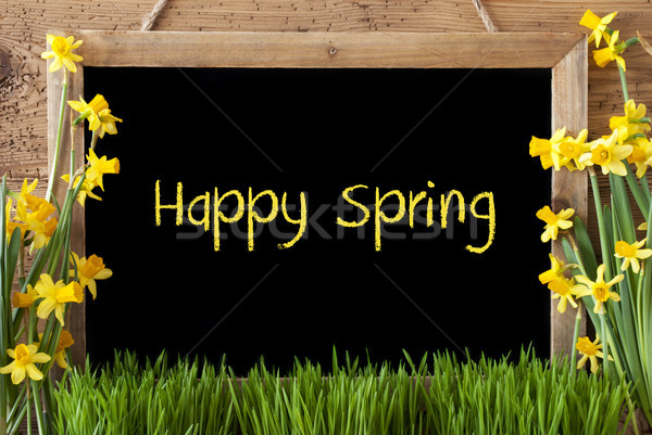 Flower Narcissus, Chalkboard, Text Happy Spring Stock photo © Nelosa