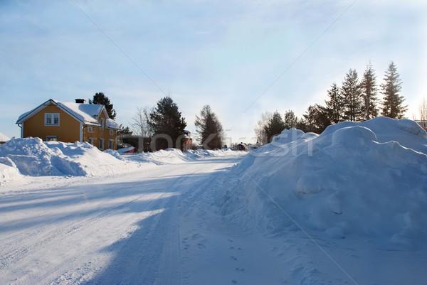 snow landscape Stock photo © Nelosa