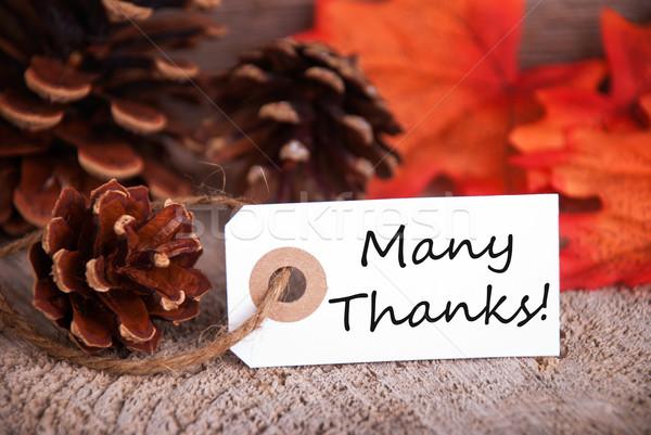 Beaucoup remerciements automne étiquette coloré laisse Photo stock © Nelosa