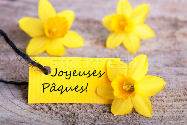 Label with Joyeuses P Stock photo © Nelosa