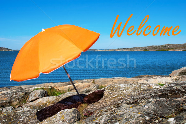 Swedish Coast With Welcome Stock photo © Nelosa