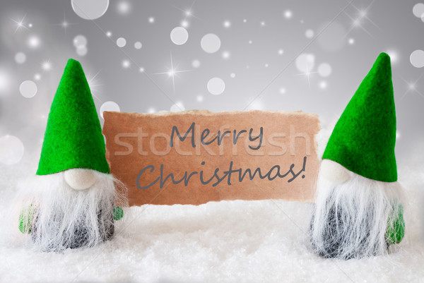 Green Gnomes With Card And Snow, Text Merry Christmas Stock photo © Nelosa