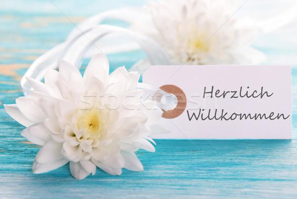 Banner with Herzlich Willkommen Stock photo © Nelosa