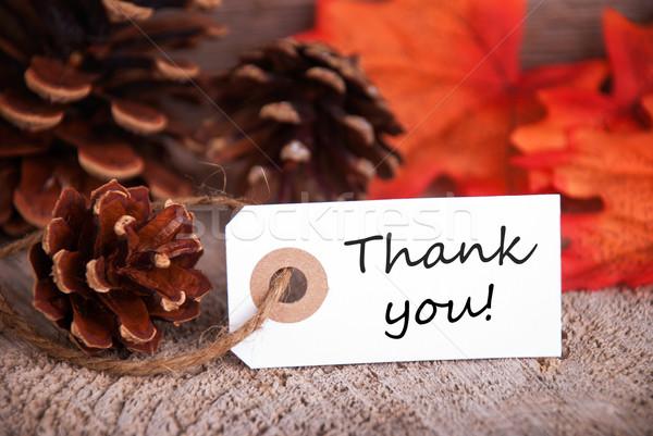 Köszönjük ősz címke textúra fa fa Stock fotó © Nelosa