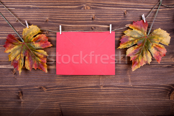 Red Label With Autumn Leaves On A Line Stock photo © Nelosa