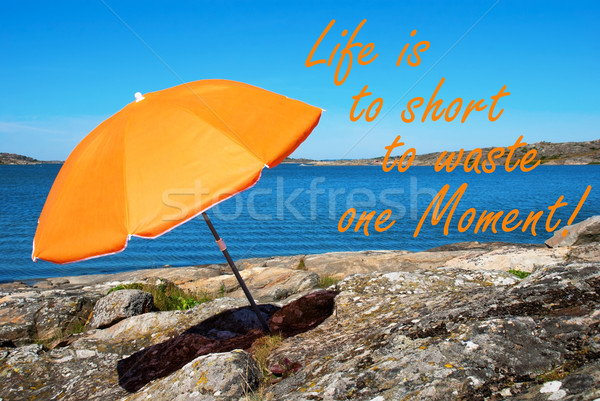 Swedish Coast With Quote Short Waste One Moment Stock photo © Nelosa