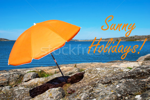Swedish Coast With Sunny Holidays Stock photo © Nelosa