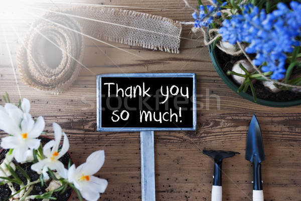 Sunny Spring Flowers, Sign, Text Thank You So Much Stock photo © Nelosa