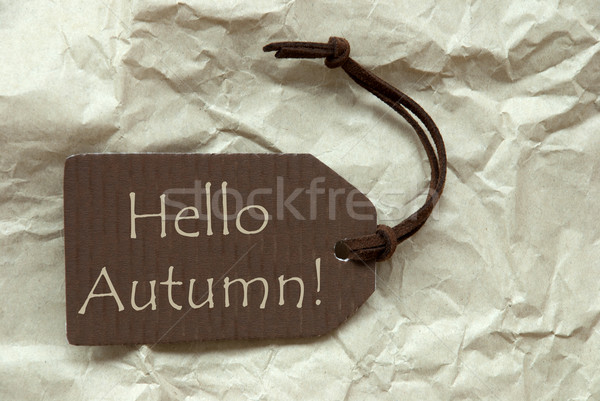 Brown Label With Hello Autumn Paper Background Stock photo © Nelosa