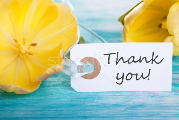 Thank You Tag Stock photo © Nelosa