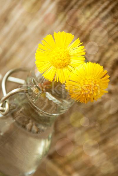 Geel bloesems zonneschijn twee vaas bloemen Stockfoto © Nelosa