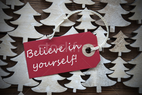 Red Christmas Label With Believe In Yourself Stock photo © Nelosa
