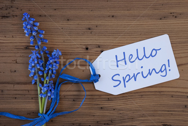 Szőlő jácint címke hello tavasz angol Stock fotó © Nelosa