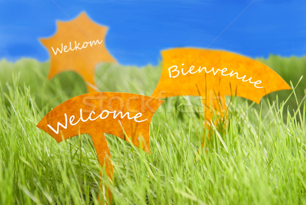 Three Labels With Welcome In Different Languages And Blue Sky Stock photo © Nelosa
