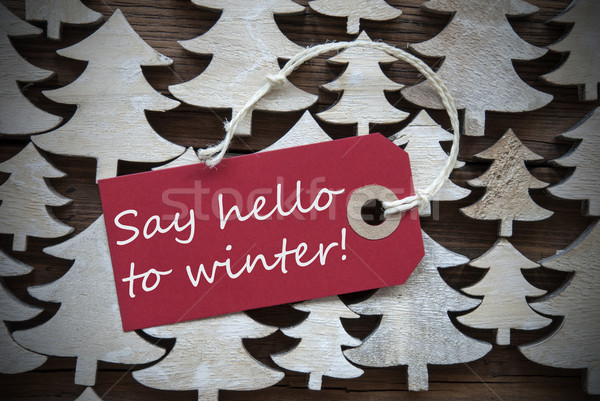 Red Christmas Label With Say Hello To Winter  Stock photo © Nelosa
