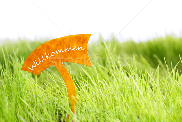 Label With German Willkommen Which Means Welcome On Green Grass Stock photo © Nelosa