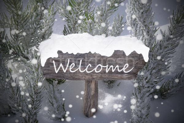 Christmas Sign Snowflakes Fir Tree Text Welcome Stock photo © Nelosa