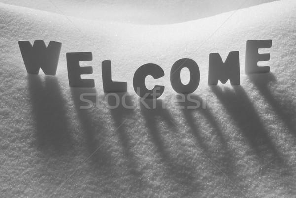 White Word Welcome On Snow Stock photo © Nelosa
