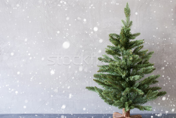 Christmas Tree With Cement Wall As Background, Snowflakes, Copy Space Stock photo © Nelosa
