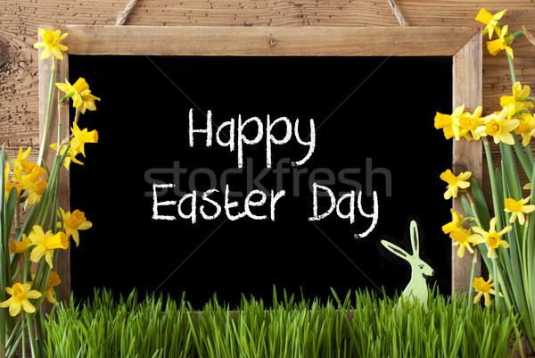 Narcissus, Bunny, Text Happy Easter Day Stock photo © Nelosa