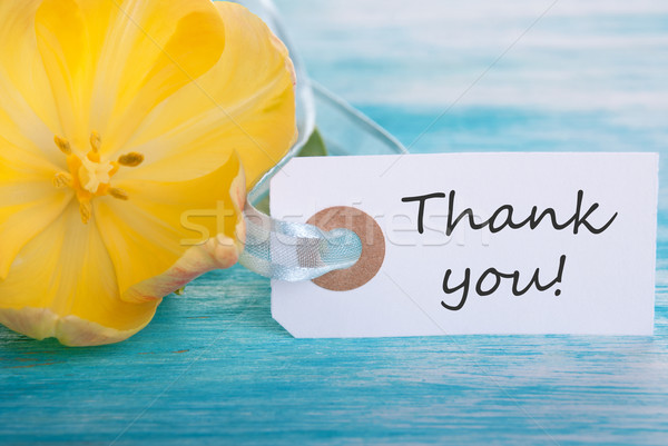 Banner with Thank You Stock photo © Nelosa