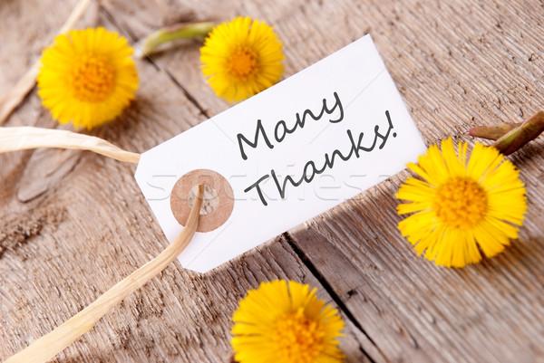 Szalag sok köszönet fehér sárga virágok virág Stock fotó © Nelosa
