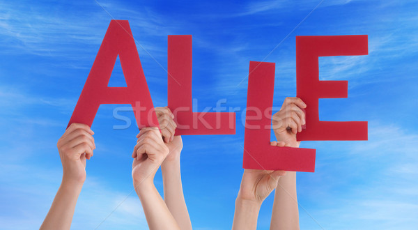 People Holding German Word Adios Means Everybody Blue Sky Stock photo © Nelosa
