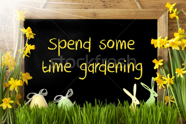 Sunny Narcissus, Easter Egg, Bunny, Text Spend Some Time Gardening Stock photo © Nelosa