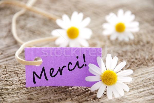 Roxo etiqueta francês palavra flor casa Foto stock © Nelosa
