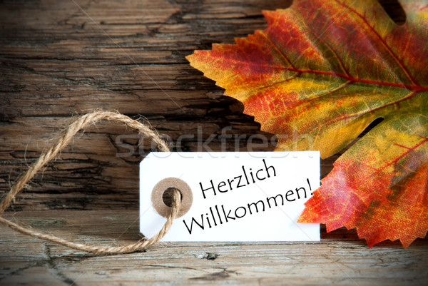 Autumn Label with Herzlich Willkommen Stock photo © Nelosa