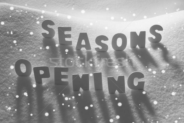 White Word Seasons Opening On Snow, Snowflakes Stock photo © Nelosa