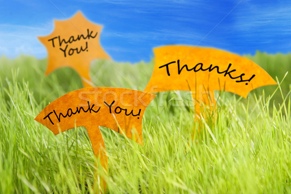 Three Labels With Thank You And Thanks And Blue Sky Stock photo © Nelosa