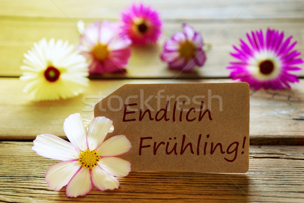 Sunny Label With German Text Endlich Fr Stock photo © Nelosa