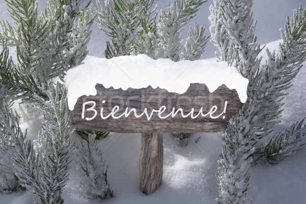 Christmas Sign Snow Fir Tree Bienvenue Means Welcome Stock photo © Nelosa
