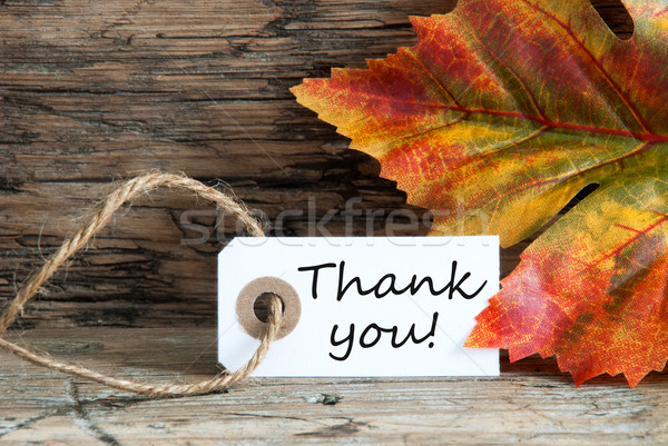 Autumnal Thank You Label Stock photo © Nelosa