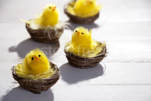 Yellow Chicks In Easter Basket Or Nest Stock photo © Nelosa