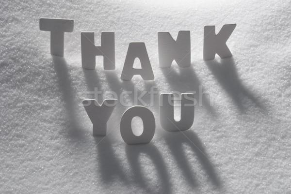 Fehér szó köszönjük hó levelek épület Stock fotó © Nelosa