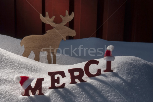 Christmas Card Moose, Snow, Merci Mean Thanks, Santa Hat Stock photo © Nelosa