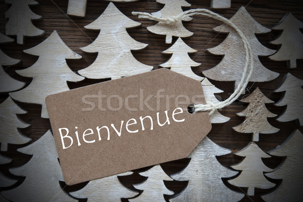Brown Christmas Label With Bienvenue Means Welcome Stock photo © Nelosa