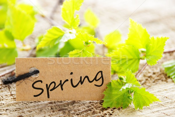 label with Spring Stock photo © Nelosa