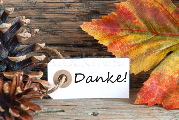 Fall Background with Danke Stock photo © Nelosa