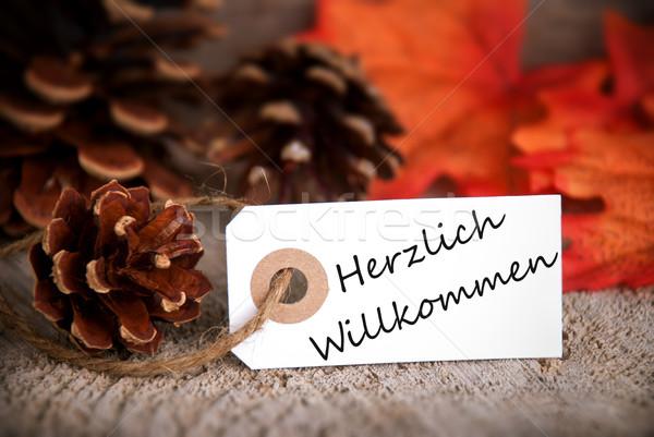 Herzlich Willkommen on Fall Label Stock photo © Nelosa