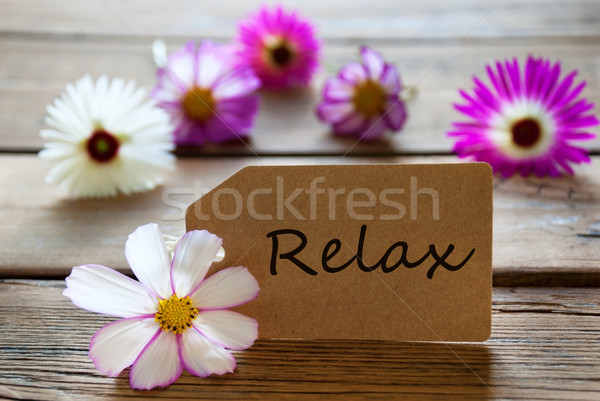 Label With Text Relax With Cosmea Blossoms Stock photo © Nelosa
