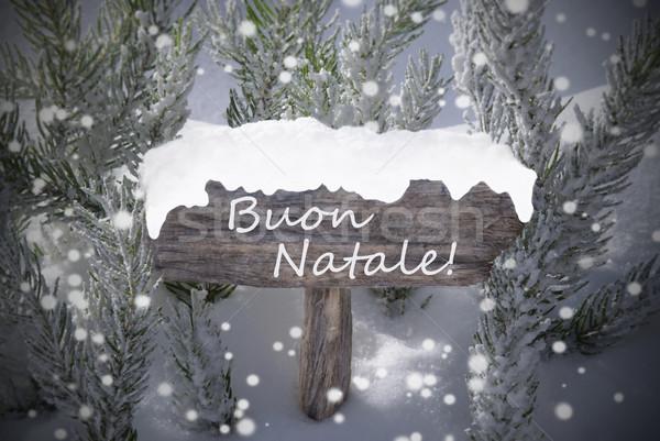 Sign Snowflakes Fir Tree Buon Natale Mean Merry Christmas Stock photo © Nelosa