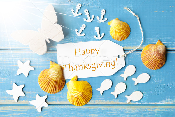 Sunny Summer Greeting Card With Text Happy Thanksgiving Stock photo © Nelosa