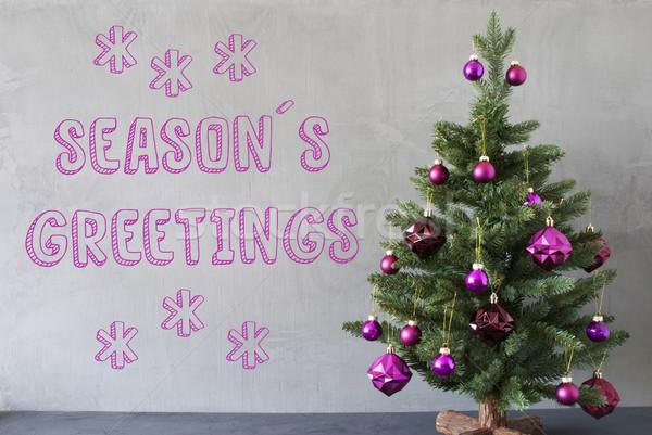 Christmas Tree, Cement Wall, Text Seasons Greetings Stock photo © Nelosa
