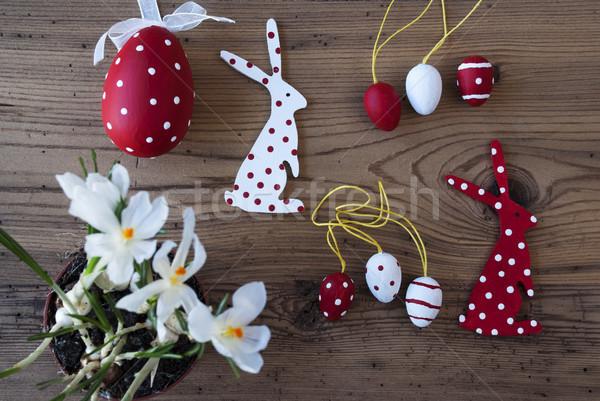 Pasqua decorazione crocus coniglio uova come Foto d'archivio © Nelosa
