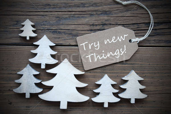 Label And Christmas Trees With Try New Things Stock photo © Nelosa