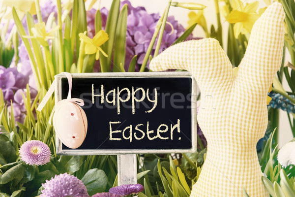 Easter Bunny, Spring Flowers, Text Happy Easter Stock photo © Nelosa